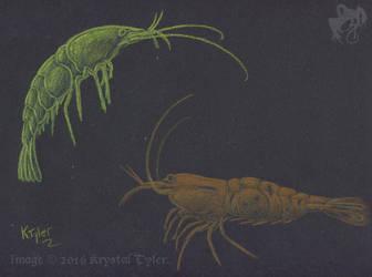 Inktense Test - Shrimp by R-Eventide