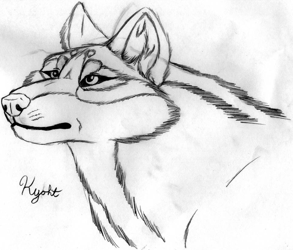Realistic Kyoht. by Kitty-Lune