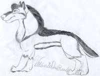 Wolf TanidaReal. by Kitty-Lune