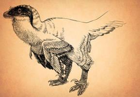 Fluffy Deinonychus by pheaston