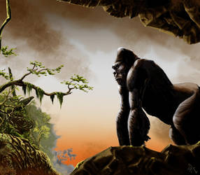 KONG by soys