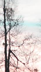 Serene by donnasueb