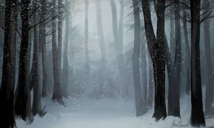 Winter Forest Enviro by feavre