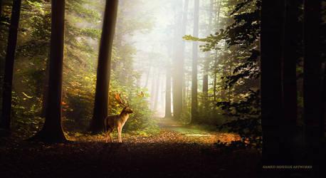 Deer by hamedShayegh