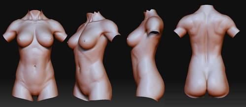 Female fitness anatomy study by Azetlor