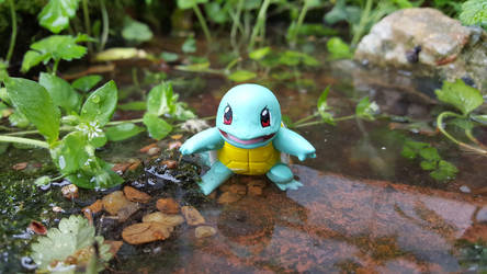 Squirtle by IsilwenShadewind