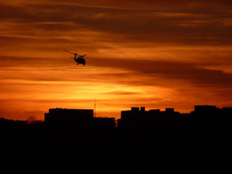 Evening flight by jezebel144