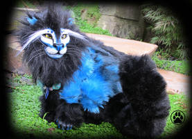 SOLD Caeruleo the blue fire lion! by CreaturesofNat