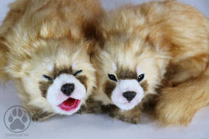 SOLD 1 month old red pandas OOAK artdolls by CreaturesofNat