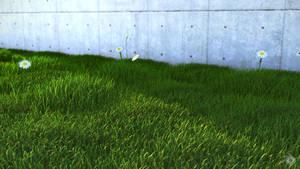 Grass First by koolean999