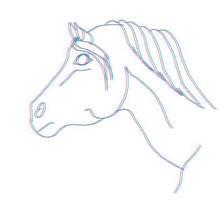 3D horse head by KenshinKyo