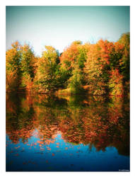 Colours of Autumn by caithness155