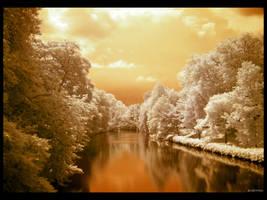 Warm Feelings IR by caithness155