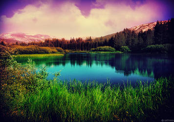 Yosemite by caithness155