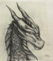 Dragon Cross Stitch -Completed by DawnMLC