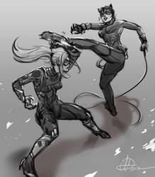 Black Cat VS Catwoman by amarcus88LG