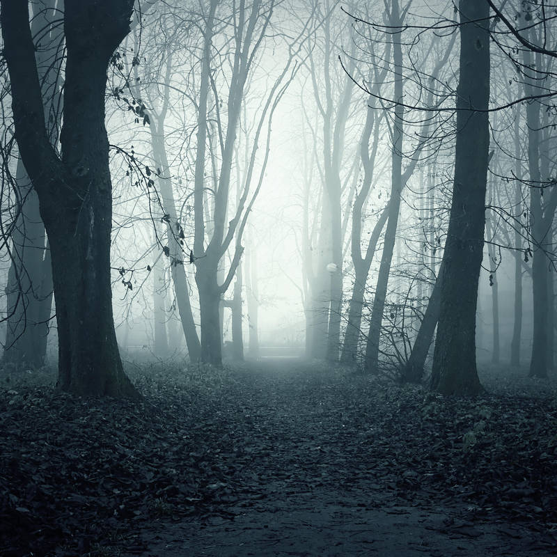 Ghostly Path Premade 1 by i-am-JENius