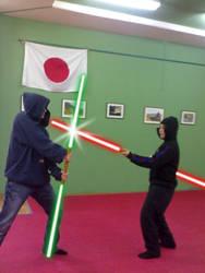Sith vs Jedi by Vierna-Drottingu