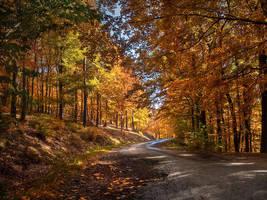 Autumn journey pt.II. by realityDream