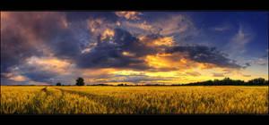 Hungarian skies pt.XCIII. by realityDream