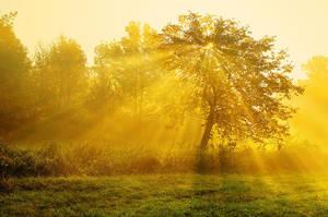Sunrise overture pt.V. by realityDream