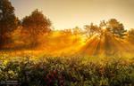 Sunrise overture pt.VI. by realityDream