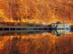 Autumn Mirror pt.IV. by realityDream