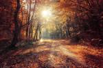 Autumn Walk XXVII. by realityDream
