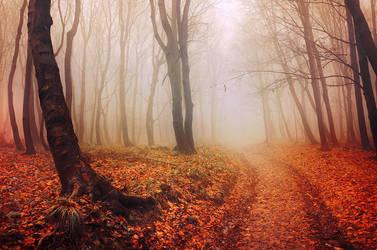 Autumn Walk LV. by realityDream