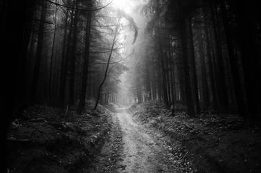 Darkest Light II. (BW) by realityDream