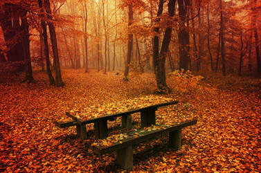 Simply Autumn II. by realityDream