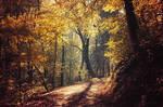 Autumn Walk LXXIII. by realityDream