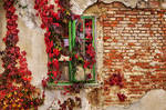 Autumn Window II. by realityDream
