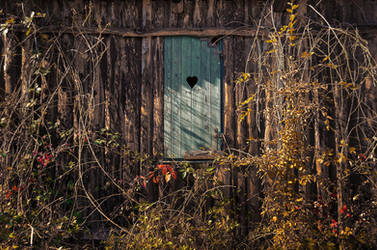 Autumn Window I. by realityDream