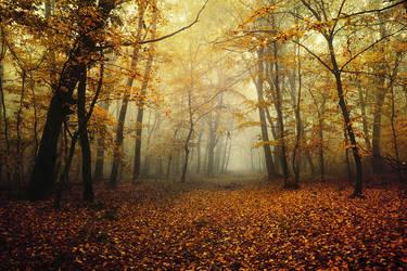 Autumn Walk CI. by realityDream