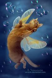 Cat's dreams by veravik