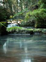 Hafren Rapids by mx