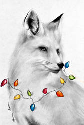 Christmas Fox by MarissaSaysHello