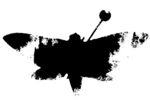 xXxX-Phoenix-XxXx's Profile Picture