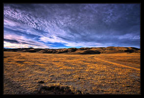 Wide Open Spaces by ernieleo
