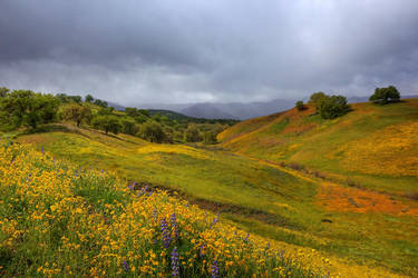 How Peaceful My Valley by ernieleo