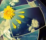 Eternal Sunshine by BlackJack0919