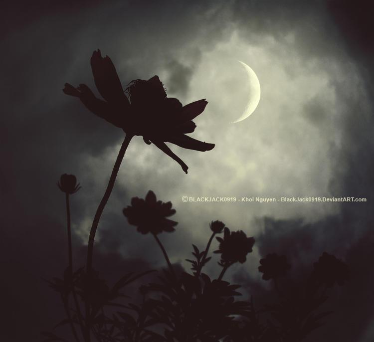 New Moon by BlackJack0919