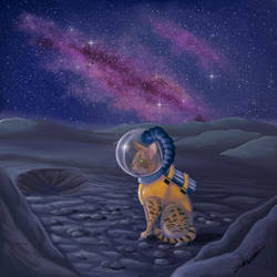 Space cat by StereophonicDream