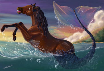 Seahorse by StereophonicDream