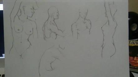 anatomia hombro by JoseSot0