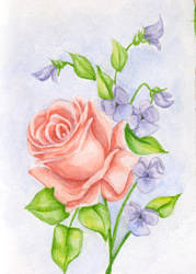 Watercolour floral by -breezy-