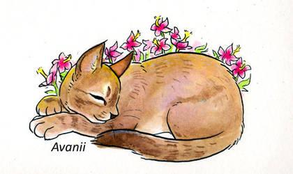 Rest in Peace Little Lady by Avanii