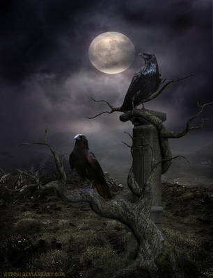 Midnight Company by Wytch1