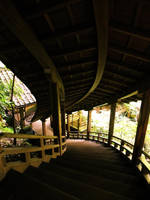 GARYURO in Eikando(kyoto) by wide-j
